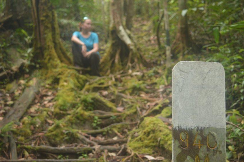 Objevování národních parků na Borneu